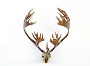 Caribou Antler, Caribou Bronze